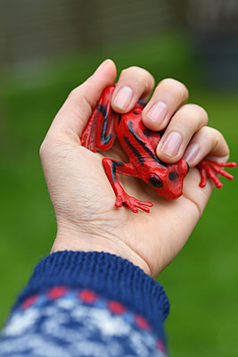 Red plastic frog - p1229m2272865 by noa-mar