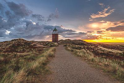 Germany, Schleswig-Holstein, Sylt, Kampen, cross light in dunes at sunset - p300m2042141 by Kerstin Bittner