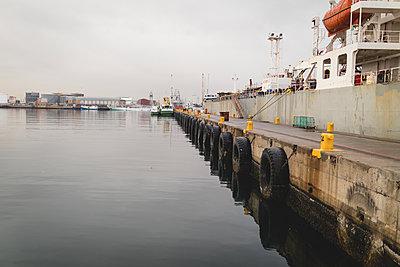 Cargo ships moored in the dockyards - p1315m1579000 by Wavebreak