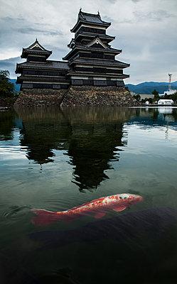 Japanische Koi und Burg Matsumoto - p1180m959706 von chillagano