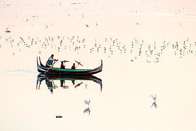 p651m2006390 von Tim Mannakee