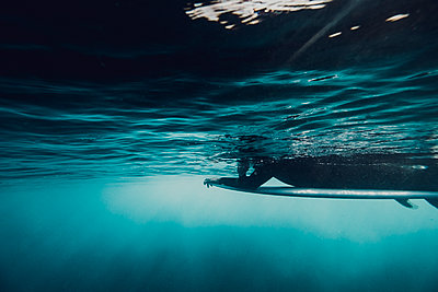 Underwater view of a surfer lying on his surfboard - p1166m2096671 by Cavan Images