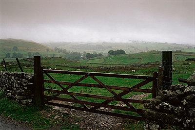 Farm gate and overcast skies near Malham, Yorkshire Dales National Park, Yorkshire, England, United Kingdom, Europe - p8712564 by Patrick Dieudonne