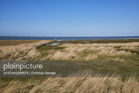 Germany, North sea - p1573m2258575 by Christian Bendel