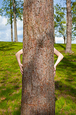 Hinter dem Baum - p397m731444 von Peter Glass