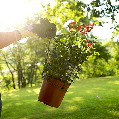 Gardening Gloves - p813m815846 by B.Jaubert