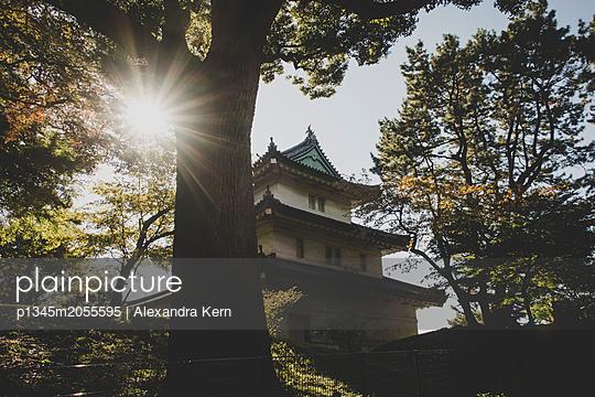 Palast in Tokio - p1345m2055595 von Alexandra Kern