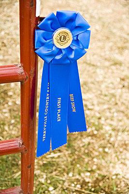 Blaue Schleife gewonnen - p3970221 von Peter Glass