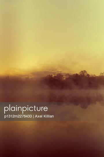 Germany, Fog on a lake - p1312m2278433 by Axel Killian