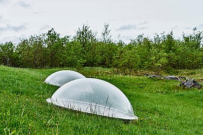 Kuppeln aus Glas auf einer grünen Wiese mit Wald - p1312m2093292 von Axel Killian