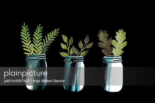 p451m2057847 by Anja Weber-Decker