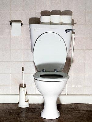 Toilet paper - p5840348 by ballyscanlon