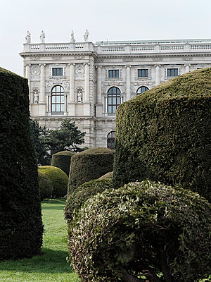 Bushes in topiary and Natural History Museum in Vienna - p1383m2116835 by Wolfgang Steiner