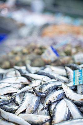 Heap of fish displayed in market - p426m858098f by Maskot