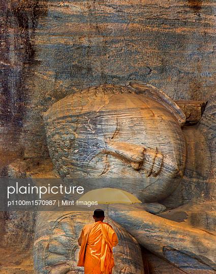 plainpicture - plainpicture p1100m1570987 - Rear view of man in orange ... - plainpicture/Mint Images