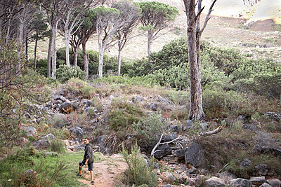 Hiker at the edge of the forest in rocky area - p1640m2261032 by Holly & John