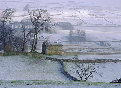 The Yorkshire Dales in winter, Yorkshire, England, UK, Europe - p8710041 by Ellen Rooney