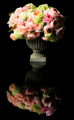 Bouquet of Flowers in Urn - p669m824019 by Ben Miller