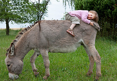 Cute girl laying on donkey in field - p301m2017779 by Julia Christe