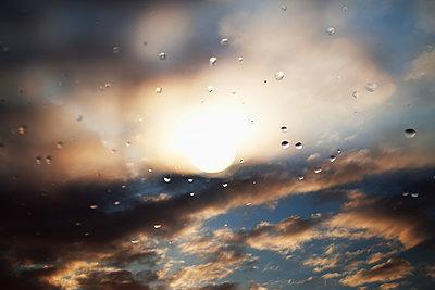 Apres la pluie - p987m2221923 by Célia Swaenepoel