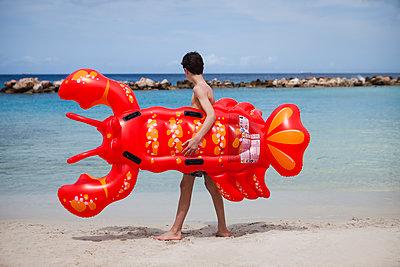 Hummer am Strand tragen - p045m1564914 von Jasmin Sander