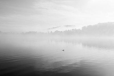 Am See - p1340m1492697 von Christoph Lodewick