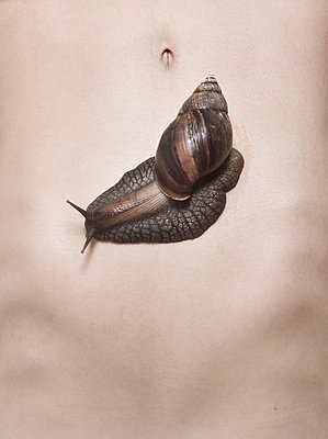 Snail on the belly - p1670m2260236 by HANNAH