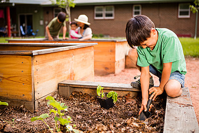 Japanese American boy helping his mom planting flowers in garden - p343m1446717 by Steve Glass