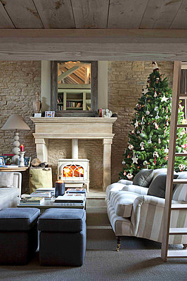 Christmas tree and wood burning stove in Wiltshire farmhouse - p349m790811 by Polly Eltes