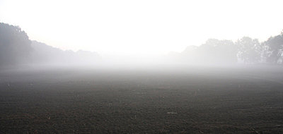 Morgennebel - p8650117 von atomara