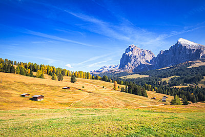 Autumn color at Seiser Alm, Dolomites, province of Bolzano, South Tirol, Italy, Europe - p871m2209745 by Francesco Bergamaschi