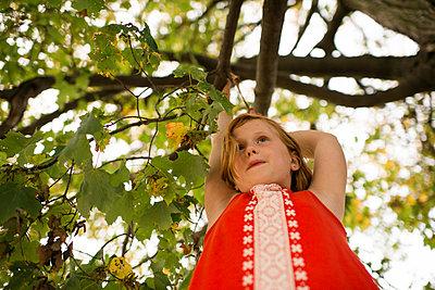 p924m2012038 von Viara Mileva