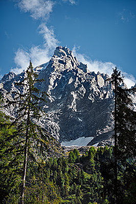 Timberline - p926m1128924 by C. Müller