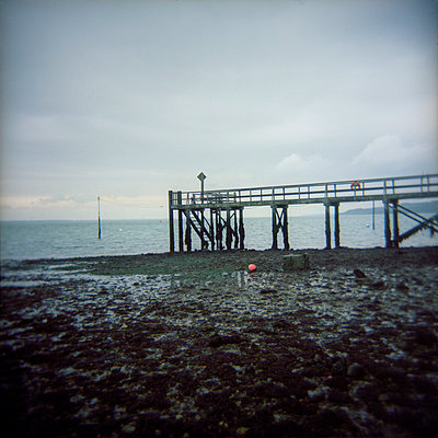 Wooden jetty at low tide on the Isle of Wight - p1072m829467 by Neville Mountford-Hoare