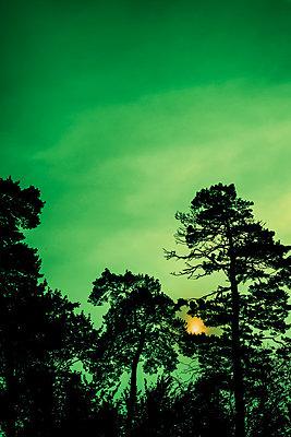 Sunset - p1228m2157906 by Benjamin Harte