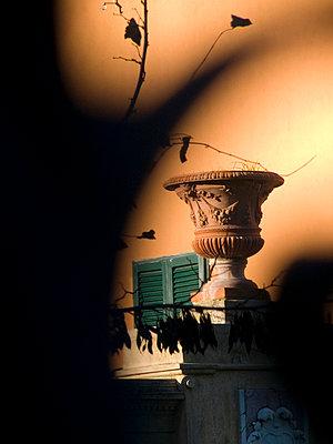 Vase vor einer Villa - p9790474 von Hanke