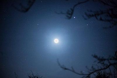 Glimmernder Mond - p686m931223 von Paul Tait