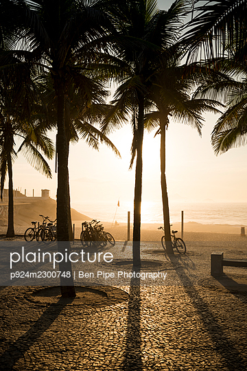 Brazil, Rio de Janeiro, Palm trees and bicycles near beach at sunset - p924m2300748 by Ben Pipe Photography