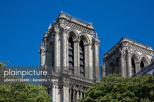 Notre Dame de Paris Towers - p940m1132498 by Bénédite Topuz