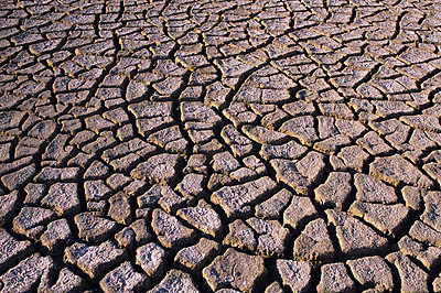 Drought - p8850240 by Oliver Brenneisen