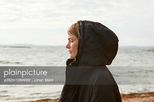p352m1099955f von Johan Mård