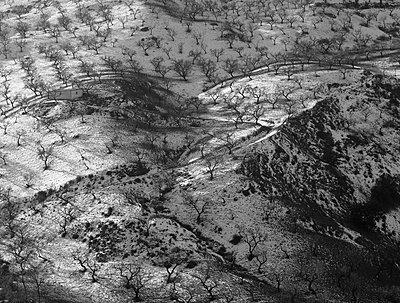 Olivenhaine in der Alpucharas; Spanien - p1016m815719 von Jochen Knobloch