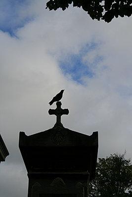 Graveyard - p1105m1165001 by Virginie Plauchut