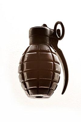 Artificial hand grenade - p1980307 by David Breun