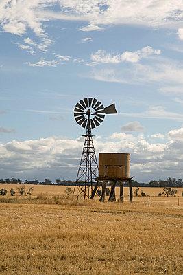 Windrad in Australien - p6280156 von Franco Cozzo