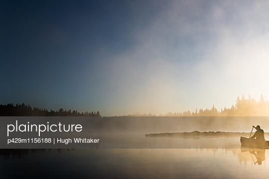 p429m1156188 von Hugh Whitaker