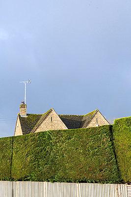 Haus hinter der Hecke - p1057m881354 von Stephen Shepherd