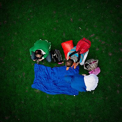 Green Grass - p1103m882523 by Virginie Pontisso