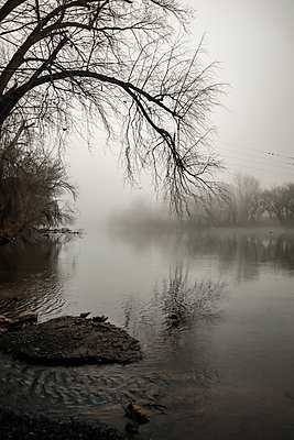 Fog over the Shenandoah River - p1019m2150139 by Stephen Carroll