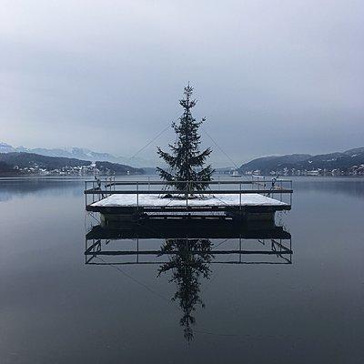 Weihnachtsbaum auf einer Plattform, Pörtschach am Wörthersee - p1401m2231741 von Jens Goldbeck